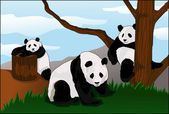 State of the panda enclosure d afternoon state of the panda enclosure d afternoon — Stok Vektör