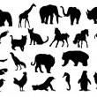 Stockvector : Silhouette of kind animals