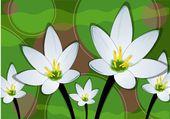 White flower background — Stock Vector