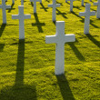 American soldiers war graves — Stock Photo