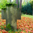 Grave headstone in fall — Stock Photo