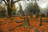 Graves with autumn leaves — Stock Photo
