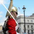 Member of the Household Cavalry — Stock Photo