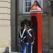 Stock Photo: Danish Royal Guards