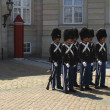 Danish Royal Guards — Stock Photo #18653673