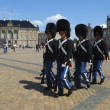 Danish Royal Guards — Stock Photo