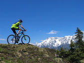 Mountainbiker in the Alps — Stock Photo