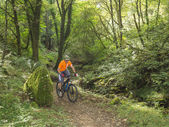 Mountain biker riding trails in Wales — Stock Photo