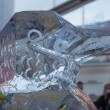 Bird ice sculpture at Sculpture Festival — Stock Photo