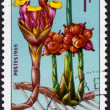 Gabonese stamp 1969 — Stock Photo