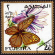 Postage stamp showing a butterfly — Stock Photo #40229879
