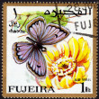 Postage stamp showing a butterfly — Stock Photo #40229883