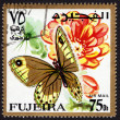 Postage stamp showing a butterfly — Stock Photo #40229919