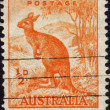 Postage stamp showing image of kangaroo — Stock Photo #40230435