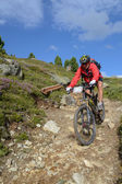 Mountain biker riding though Swiss mountain area — Stock Photo