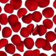 Stock Photo: Red rose petal background