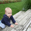 Stock Photo: Baby crawling outside