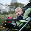 Baby in Stroller — Stock Photo #20145037