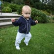 Stock Photo: Baby learning to walk