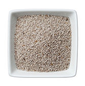 White chia seeds in a bowl isolated on white background — Photo