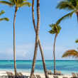 Luxury resort beach in Punta Cana, Dominican Republic — Stock Photo #45583239