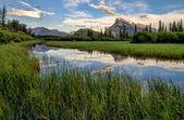 山の反射と朱色の湖沼湿原 — ストック写真