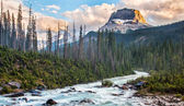 Rockey Peak in Yoho National Park — Stock Photo