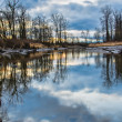 Bare Trees Reflected in River — Stock Photo