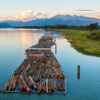 Stock Photo: Logs on River and Distant Mountains