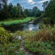 Stock Photo: Green Trees with Winding River