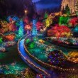 Butchart Gardens Colorful Christmas lights — Stock Photo