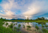 Marsh with Mountain and Amazing Clouds — Stock Photo