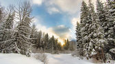 Sunrise behind a winter wonderland — Stockfoto