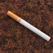Single cigarette on tbacco texture background — Stock Photo