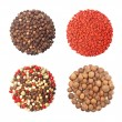 Set of four different spices round shape on white — Stock Photo