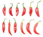 красного острого перца чили, изолированные на белом фоне — Стоковое фото
