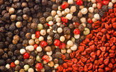 Spices background texture — Stock Photo