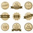 Retro vintage labels set — Stock Vector