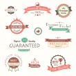 Stock Vector: Collection of premium quality vintage labels and badges