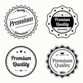 Collection of premium quality vintage labels — Vetorial Stock