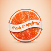 Fresh grapefruit with ribbon — Stock Vector