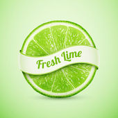 Fresh lime with ribbon — Stock Vector