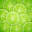 Lime fruit slices background — Stock Vector
