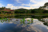 Reflection of hills and sky on a fish pond — Stock Photo