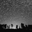 Stock Photo: Startrails in black and white