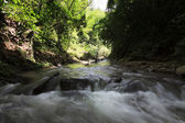 River in a rainforest at Borneo, Sabah, Malaysia — Stock Photo
