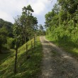 Gravel path leading up a hill at Borneo, Sabah, Malaysia — Foto de Stock