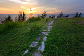 Green grass and stone path with sunset — Foto de Stock