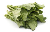 Mustard greens vegetable over white background — Stock Photo