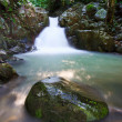 Stock Photo: Waterfall in rainforest at Sabah, Borneo, Malaysia